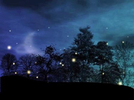 Firefly inspiration