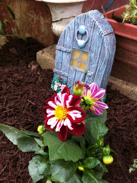 fairy door with dahlias