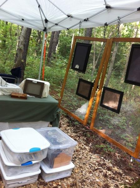 Art camping