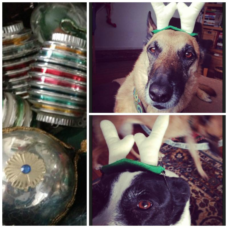Ornamental dogs